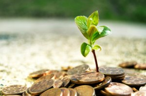growing-your-money-with-investments